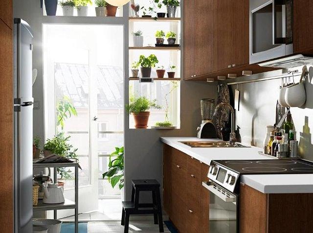 Không gian xanh nhỏ cho bếp